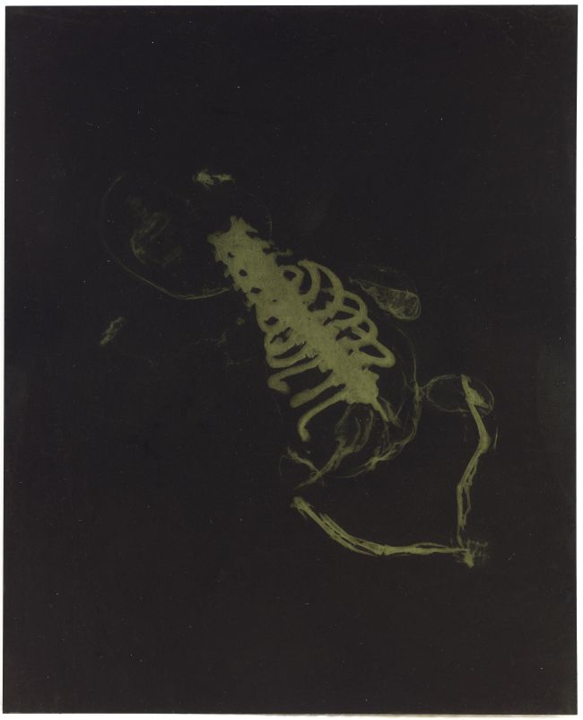 Click the image for a view of: Rosemarie Marriott. vroed 2. Polymer etching plate