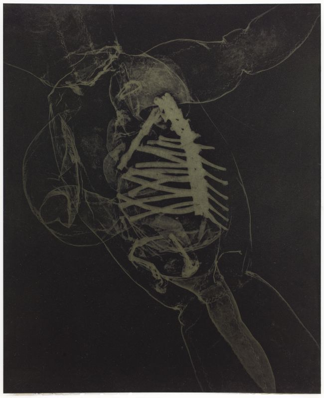Click the image for a view of: Rosemarie Marriott. beskerm. Polymer etching plate