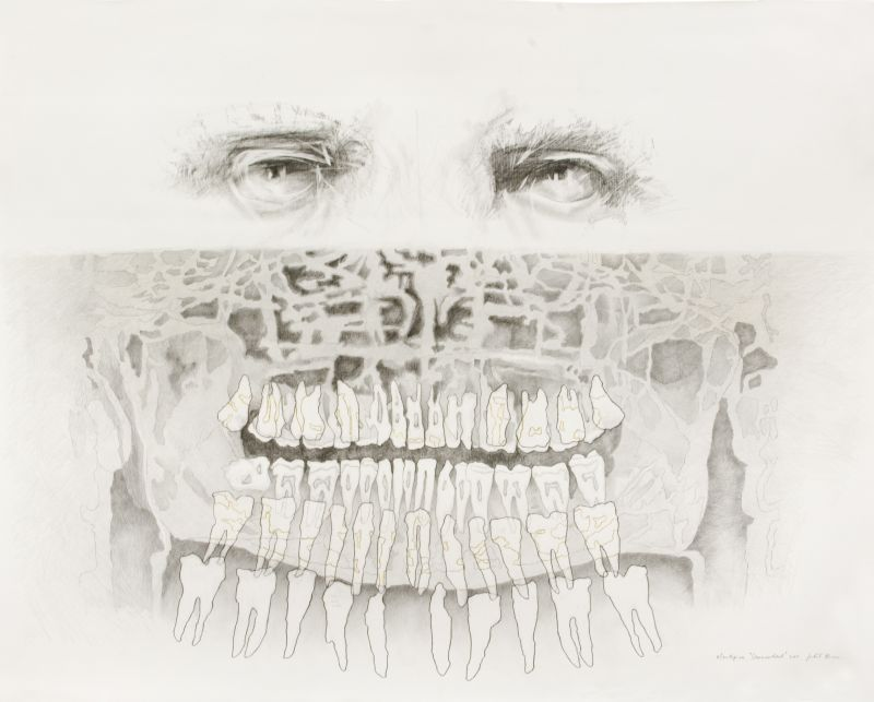 Click the image for a view of: Mouthpiece Commandant. 2011. Pencil and coloured pencil on paper. 1175X1497mm