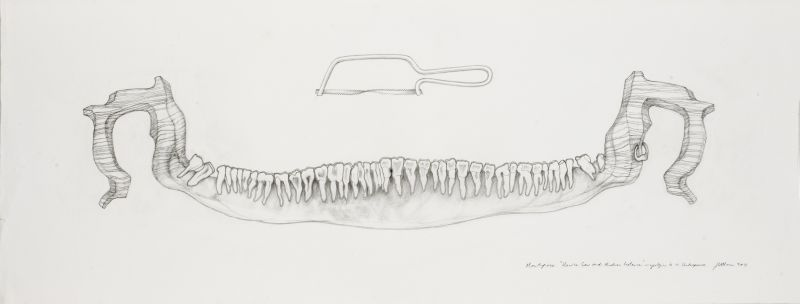 Click the image for a view of: Mouthpiece Unwise Saw and Modern Instance- apologies to W. Shakespeare. 2011. Pencil on paper. 410X1090mm