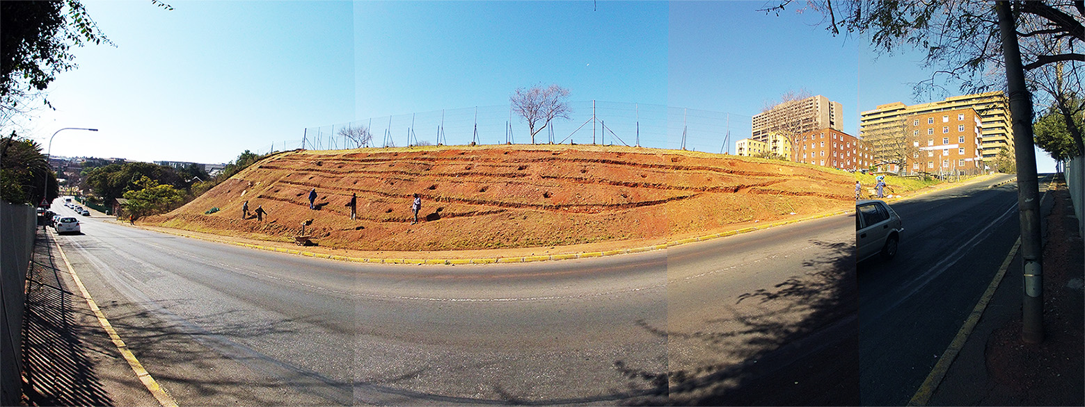 Click the image for a view of: Bramble Fountain Food Forest. Under construction. Winter 2013.